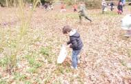A la recherche des oeufs de Pâques !