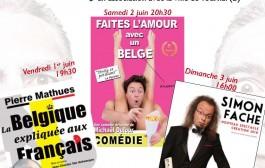 Festival de l'humour les 1er, 2 et 3 juin au Petit Théâtre de Templeuve-en-Pévèle