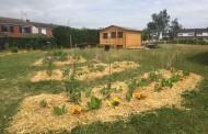 Jardin partagé «Espace Vers» de Templeuve-en-Pévèle : Retour en images