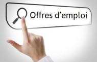 Offres d'emploi dans la Pévèle Carembault : consultez le Portail Emploi !